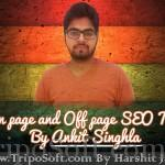 Interview with Ankit Singla  – Shared On Page & Off Page SEO Tips..!!